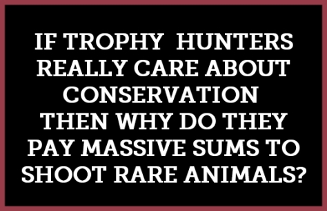 Trophy hunters - Conservation why hunters kill rare animals