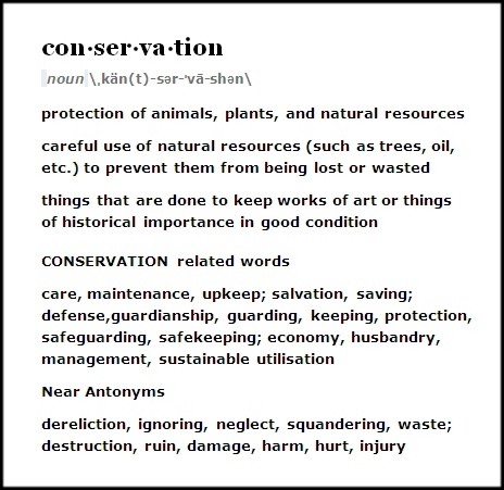 Trophy hunters - Definition conservation