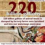 Factory farming - 220 billion galllons of animal waste