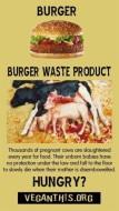 Factory farming - cattle burger waste product dead calves