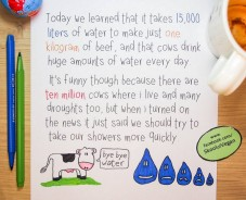 Factory farming - child's view