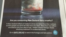 Factory farming - dairy stats