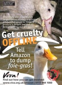 Factory farming - Poultry ducks foie-gras
