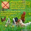 Factory farming - poultry eggs