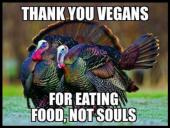 Factory farming - Poultry turkey