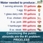 Factory farming - stats water