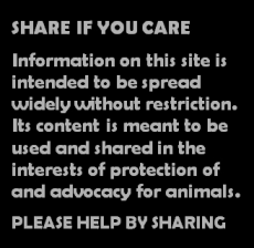 Message - Facebook share if you care