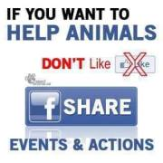 Message - Facebook share not like