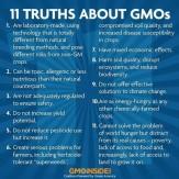 Message - GMOs truths