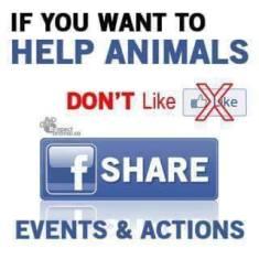 Message - Holocaust Facebook share not like