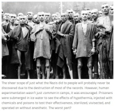 Message - Holocaust human