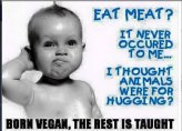 Vegan - born vegan rest taught
