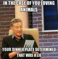 Vegan - fallacies loving animals