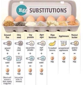 Vegan - foods egg chicken substitutes