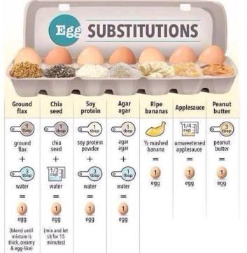 Vegan - foods egg chicken substitutes