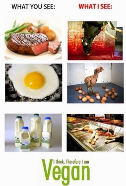 Vegan - foods meateating what you see and what I see