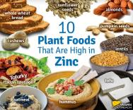 Vegan - foods plant foodss high in zinc