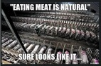 Vegan - holocaust fallacies meat-eating is natural Tw
