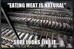 Vegan - holocaust fallacies meat-eating is natural Tw