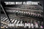 Vegan - holocaust fallacies meat-eating is natural