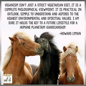 Vegan - not just a strict diet