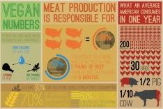Vegan - stats