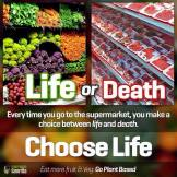 Vegan - truth reasons choose ife or death