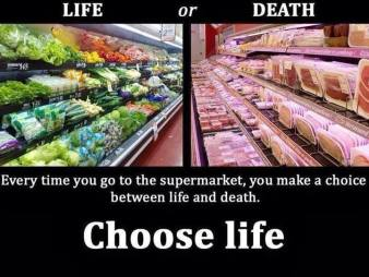 Vegan - truth reasons choose life or death