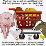 Vegan - truth reasons loves animals not when body parts in trolley