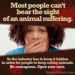 Vegan - truth reasons most people can't bear the sight