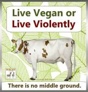 Vegan - truth reasons violence no middle ground