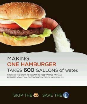 Vegan - truth reasons water hamburger takes 600 gallons