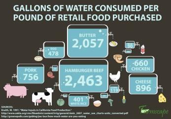 Vegan - truth reasons water used