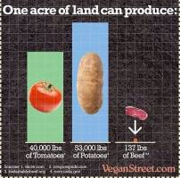 Vegan - truth stats one acre of land produce