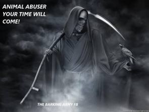 Animal abuse - Abusers your time will come