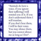 Animal abuse - Animals talk do have a voice