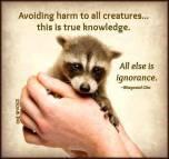 Animal abuse - Avoiding harm