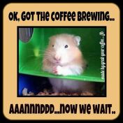 Animal abuse - Coffee brewing