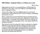 Animal abuse - Felony
