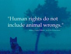 Animal abuse - Human rights do not include animal wrongs
