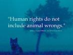 Animal abuse - Human rights do not include animal wrongs