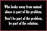 Animal abuse - Pics abuse looks away part of problem
