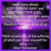 Animal abuse - Pics spare yourself Albert Schweitzer