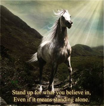 Animal abuse - Stand up for what you believe in