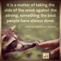 Animal abuse - Take sides