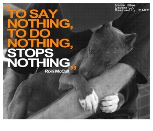 Animal abuse - To Say Nothing