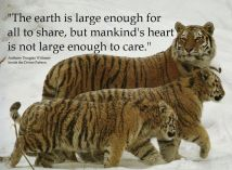 Animal abuse - World is large enough to share