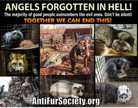 Fur and skin trade - Angels forgotten in hell.jpg