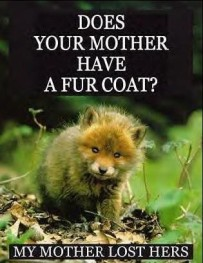 Fur and skin trade - Fox 05 does your mother have a fur coat