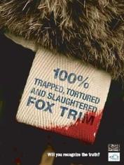 Fur and skin trade - Fox 07 trim